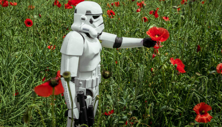 stormtrooper picking poppy