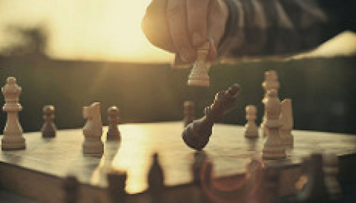 chess strategy, risk appetite in asset allocation