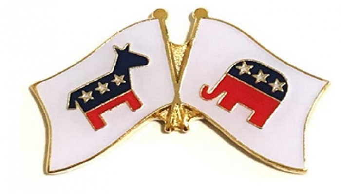bipartisan pin badge